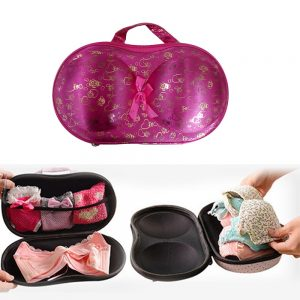 TGS – Bra Organizer Bag, Lingerie Travel Bra Bag Organizer, Organizer case, Travel Bra Storage Bag – (Set of 1)