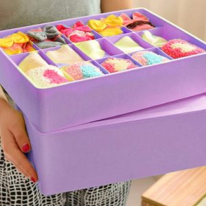 Underwear Organizer Box